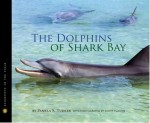 Dolphins of Shark Bay