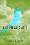 Interview with Elizabeth O. Dulemba, debut author of A Bird on Water Street