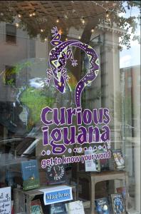 curius iguana front
