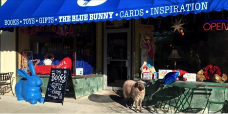 Indie Spotlight: Blue Bunny Books & Toys, Dedham MA