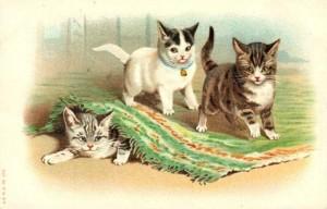 vintage-cat-clip-art-three-playful-kittens-under-rug
