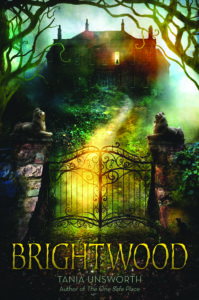 Book jacket for Brightwood
