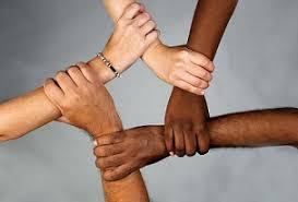 Diversity in MG Lit #1