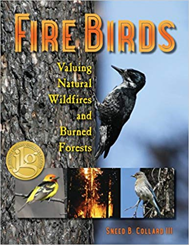 Firebirds cover