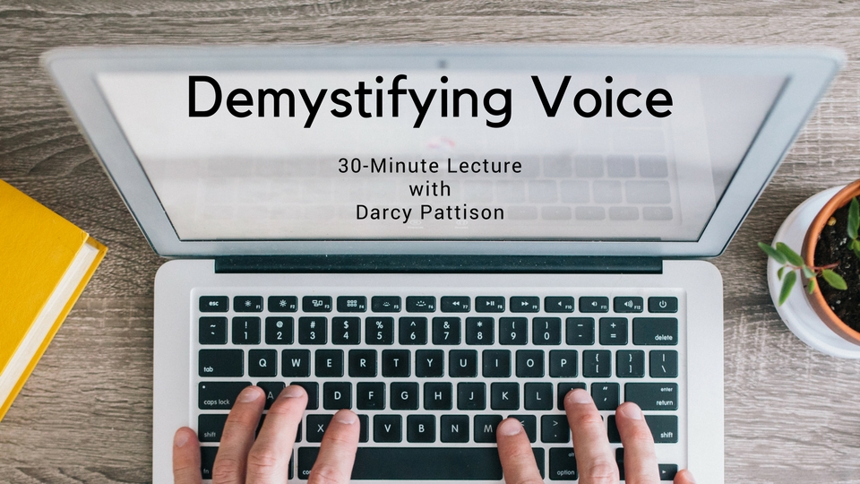 Interview & DEMYSTIFYING VOICE Course Giveaway with Darcy Pattison